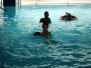 Zajęcia basenie