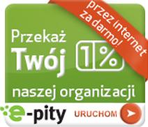 Program do rozliczania PIT 2013 online - e-pity 2016